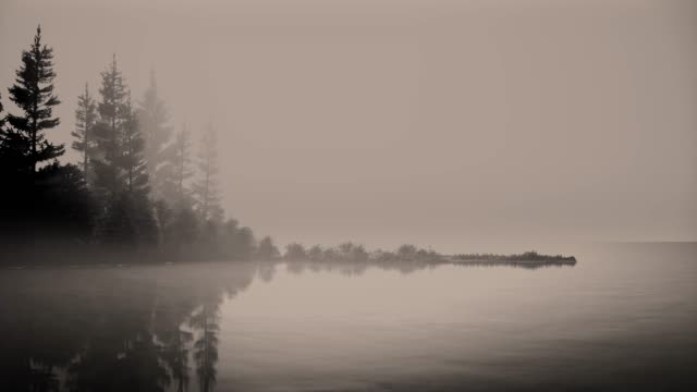 mist on a lake at dawn with trees. - horizontal stock videos & royalty-free footage