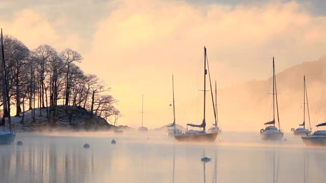 stockvideo's en b-roll-footage met mist over a lake - knobbelzwaan