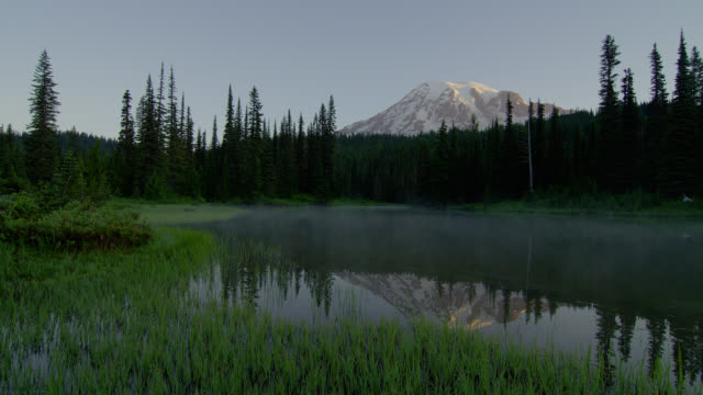 wide pan mist over pond with reflection of mount rainier and pine forest in background in morning - mt rainier national park stock videos & royalty-free footage