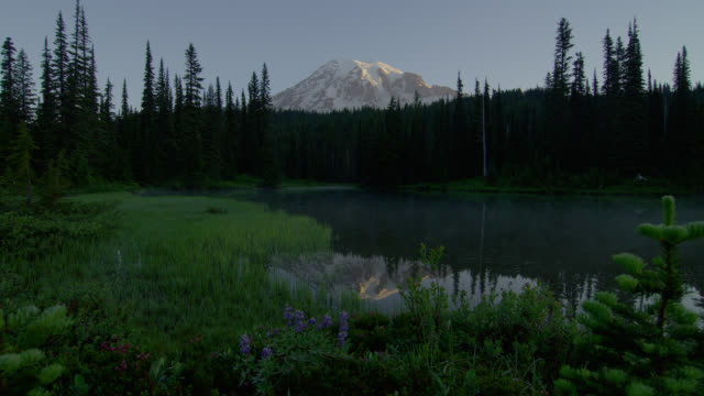 vídeos de stock, filmes e b-roll de wide shot mist over pond with reflection of mount rainier and pine forest in background in morning - lago reflection