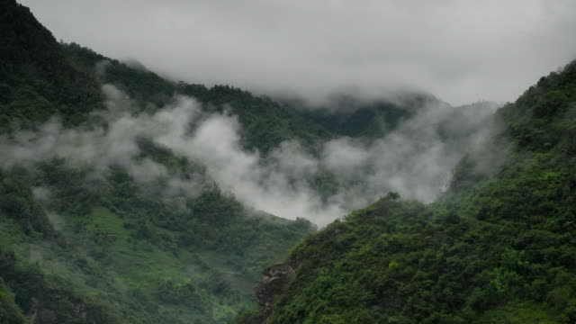 Mist rises and billows in lush valley, Yunnan, China