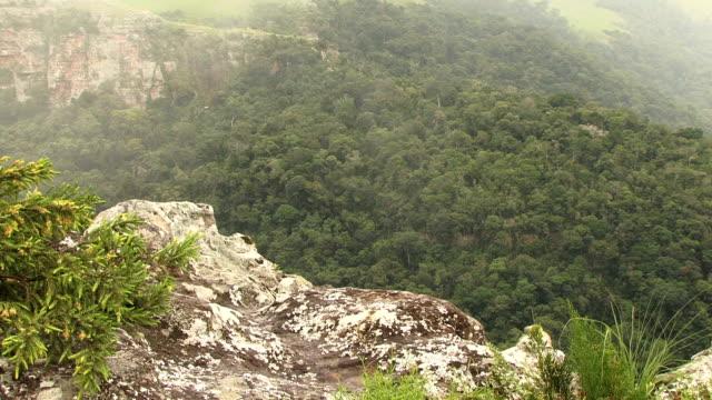 vídeos y material grabado en eventos de stock de niebla aumenta desde piso valley en el sur de áfrica - kwazulu natal