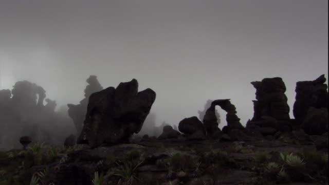 mist settles over strange rock formations on the auyantepui summit in venezuela. available in hd. - tafelberg felsformation stock-videos und b-roll-filmmaterial