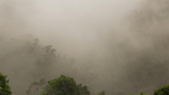 misty cloudforest in the foothills of the andes in cordillera de los guacamayos, ecuador - anhöhe stock-videos und b-roll-filmmaterial
