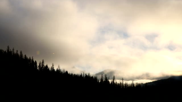 misty clouds rising over jagged mountain peaks in background at sunrise. - wilderness stock videos and b-roll footage