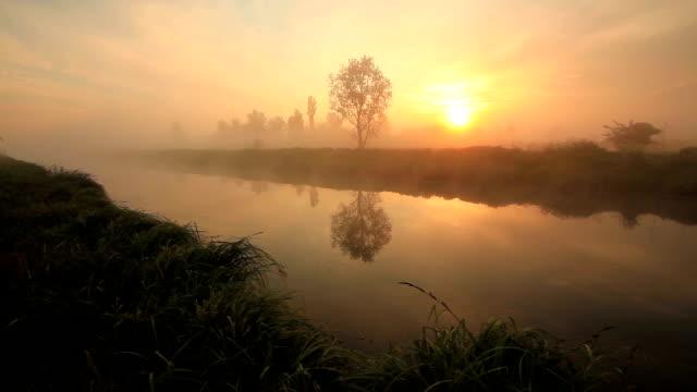 misty dawn on the river - romantische stimmung stock-videos und b-roll-filmmaterial
