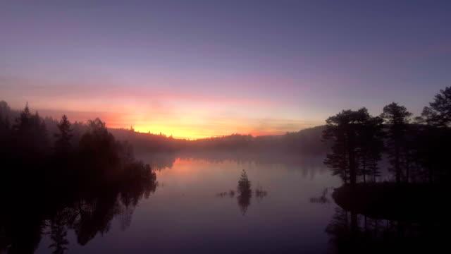 vidéos et rushes de misty forest and colorful sunrise - grandiose
