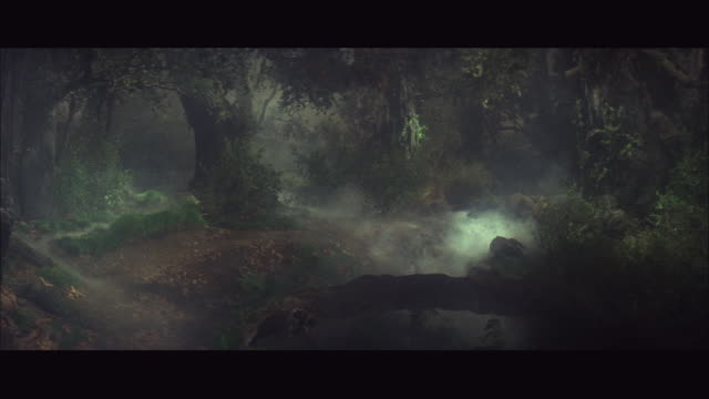 vidéos et rushes de 1966 ws misty forest at night - fantaisie