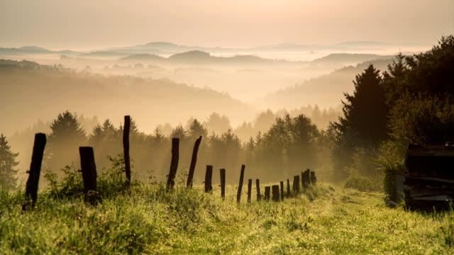 KRANICH BIS: Misty Hills Sonnenaufgang