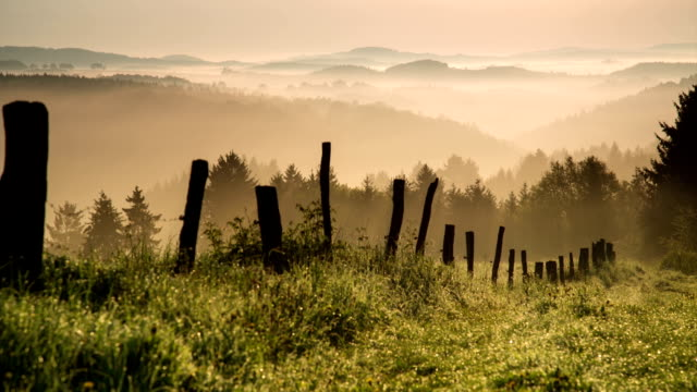 CRANE UP: Misty Hills