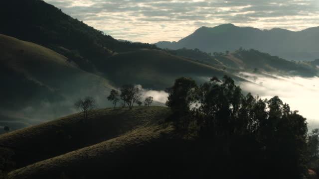 misty landscape in mantiqueira mountains - ekoturism bildbanksvideor och videomaterial från bakom kulisserna