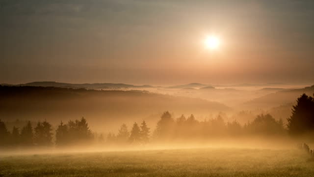 crane down: misty landschaft - sonnenaufgang stock-videos und b-roll-filmmaterial