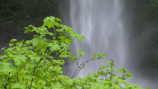 Misty Latourell Falls