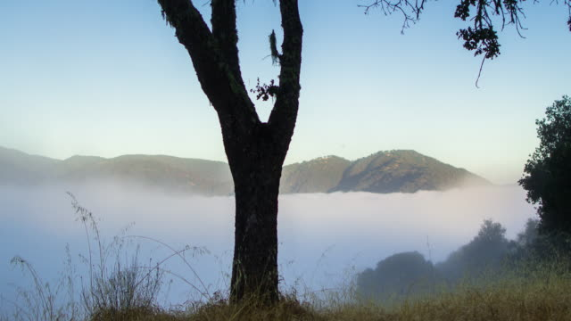 misty morning in carmel valley - time lapse - carmel california stock videos & royalty-free footage