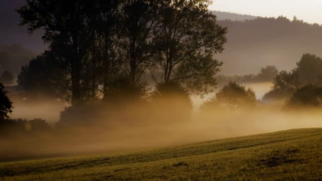 Misty Morning - Tanz Nebel-Zeitraffer