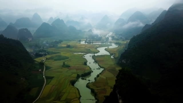 misty morning - vietnam stock videos & royalty-free footage