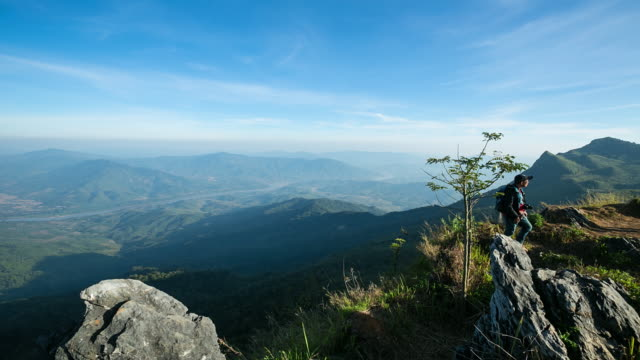 Misty mountain forest, Thailand