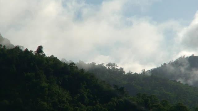 misty montagne - area selvatica video stock e b–roll