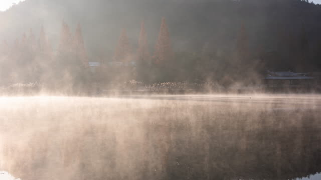 misty obongje reservoir at sunrise / naju-si, jeollanam-do, south korea - sequoia stock videos & royalty-free footage
