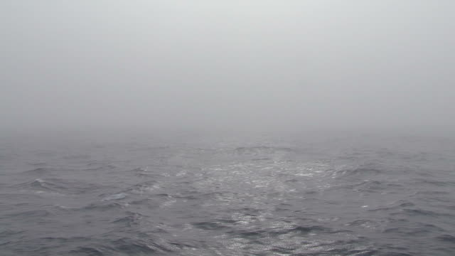 misty ocean, drakes passage, antarctica - drake passage stock videos and b-roll footage