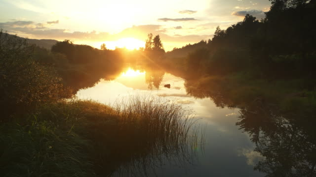 aerial misty river shining in the rising sun - meadow stock videos & royalty-free footage