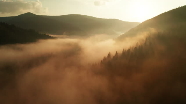 misty sunrise in the mountains with a beautiful sky. drone video - ウクライナ点の映像素材/bロール