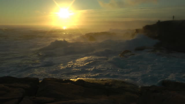 misty surf at peggys cove - coastal feature stock videos & royalty-free footage