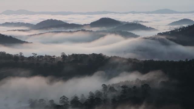 misty valley in morning mist - nebel stock-videos und b-roll-filmmaterial