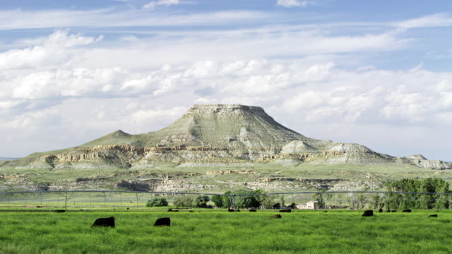 vidéos et rushes de mix motion time lapse of a butte and cattle in wyoming medium shot. - piton rocheux