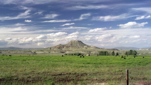 vidéos et rushes de mix motion time lapse of a butte and cattle in wyoming. - piton rocheux