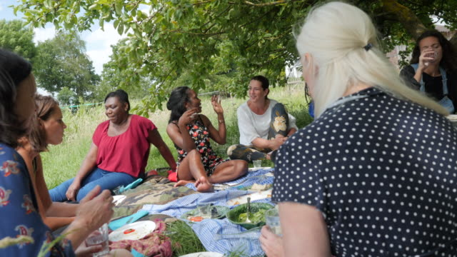 Mixed group of women and girls at a picnic