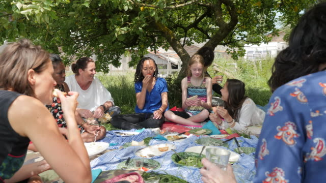 mixed group of women and girls having a picnic - spoon stock videos and b-roll footage