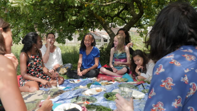 mixed group of women and girls having a picnic - shy stock videos & royalty-free footage