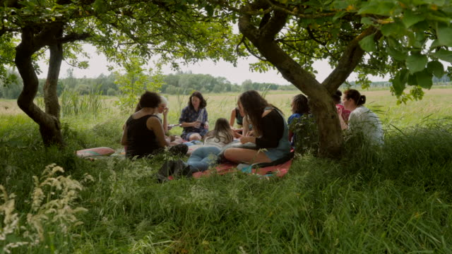 stockvideo's en b-roll-footage met mixed group of women and girls having a picnic - picknick