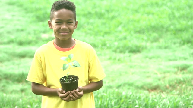 mixed race african american boy holding potted plant - pot plant stock videos and b-roll footage