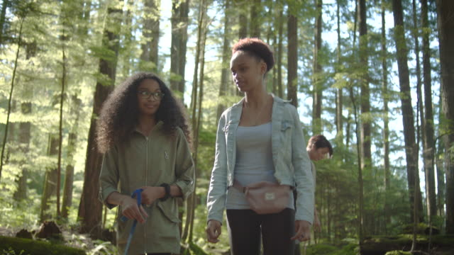 mixed race family walk through the forest - fashionable stock videos & royalty-free footage
