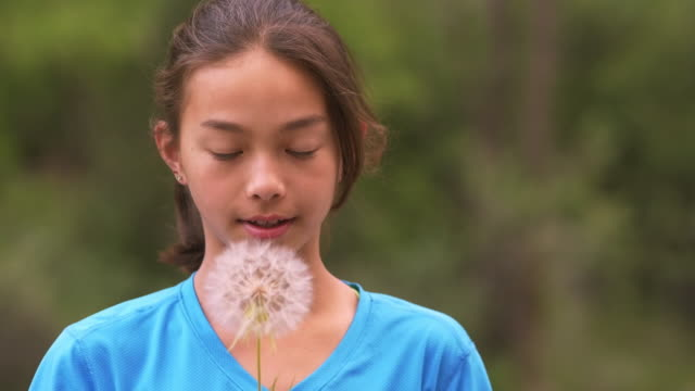 mixed race girl blowing dandelion seeds in wind - one teenage girl only stock videos & royalty-free footage