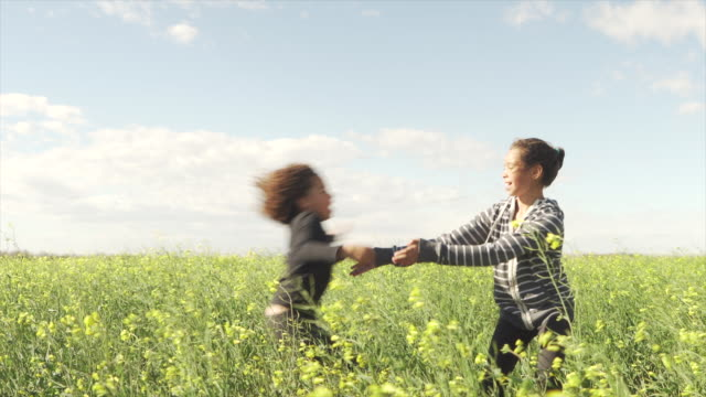 Mixed race girls play together in canola field