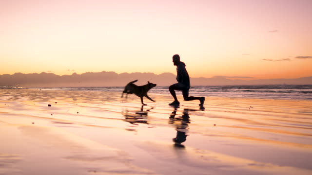 mixed race man stretching with his dog on a beach at dawn - relaxation exercise stock videos & royalty-free footage