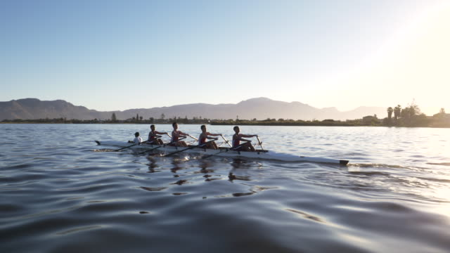 mixed race rowing team training on a lake at dawn - oar stock videos & royalty-free footage