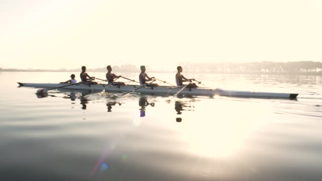 mixed race rowing team training on a lake at dawn - canottaggio video stock e b–roll