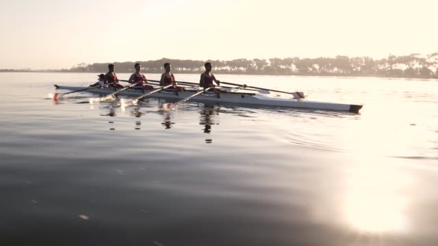 mixed race rowing team training on a lake at dawn - rowing stock videos & royalty-free footage
