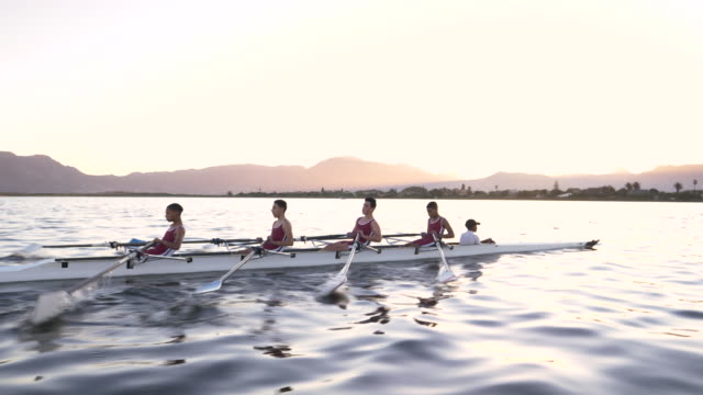 vidéos et rushes de mixed race rowing team training on a lake at dawn - équipage de bateau