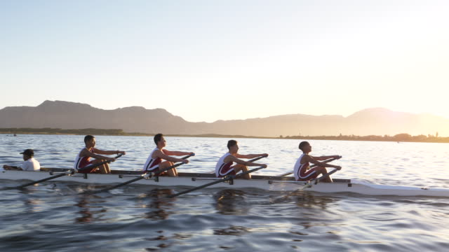 mixed race rowing team training on a lake at dawn - rudern stock-videos und b-roll-filmmaterial