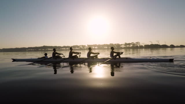 vídeos de stock e filmes b-roll de mixed race rowing team training on a lake at dawn - coordenação