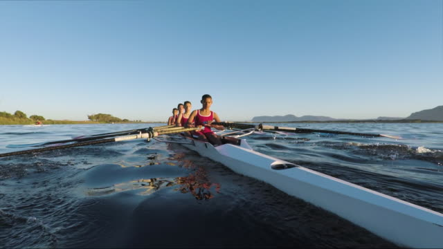 mixed race rowing team training on a lake at dawn - sports team stock videos & royalty-free footage
