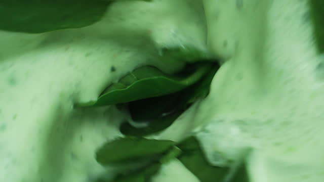 mixing a spinach smoothie in a blender - smoothie stock videos & royalty-free footage