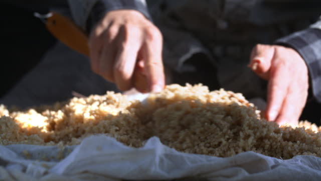 mixing grains of cooked rice on a cloth - 玄米点の映像素材/bロール