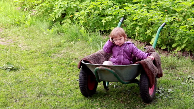 mobile office - baby sitting inside the wheelbarrow and talking on the mobile phone - adult imitation stock videos and b-roll footage