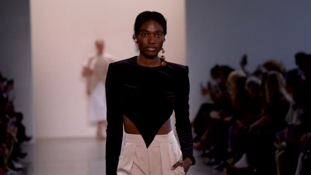 model walks the runway for the bibhu mohapatra fashion show at gallery ii at spring studios on february 11, 2020 in new york city. - ニューヨークファッションウィーク点の映像素材/bロール